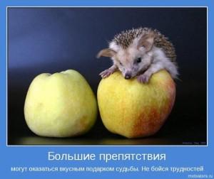 """Марафон """"Мудрые отношения"""""""